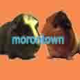 morontown