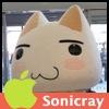 Sonicray